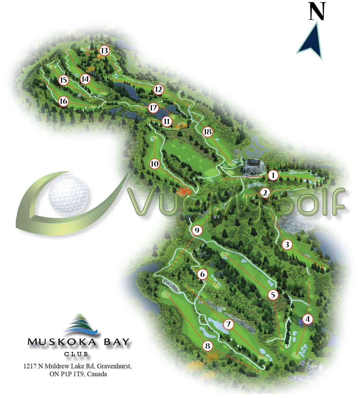 golf club graphics